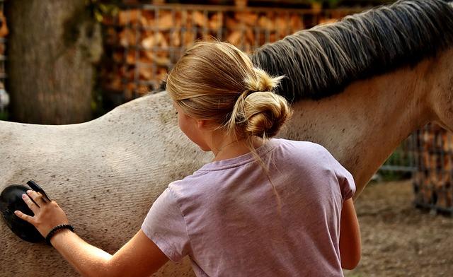 Pflege Ihres Pferdes